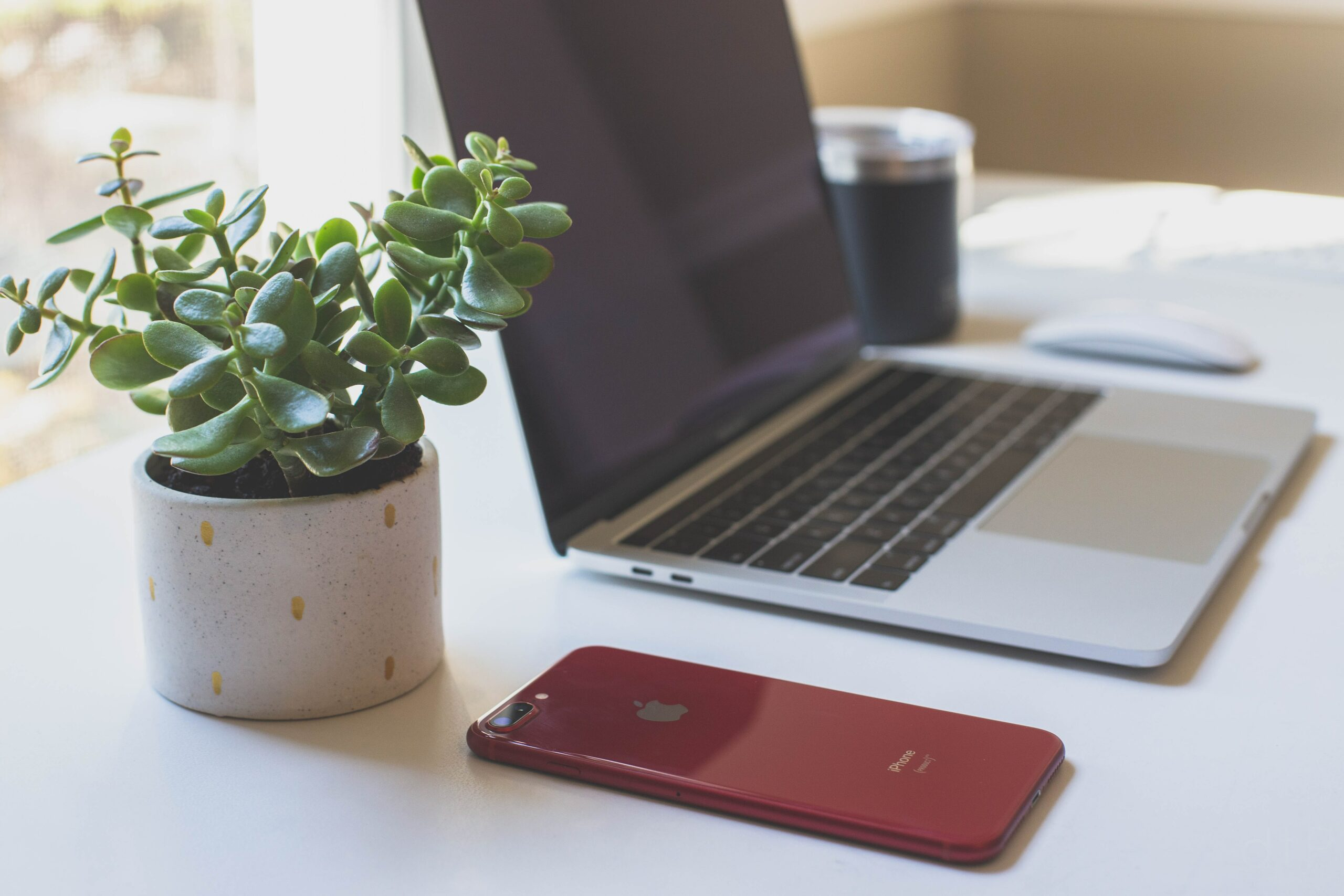 Laptop Image - Swedish Institute - New York, NY